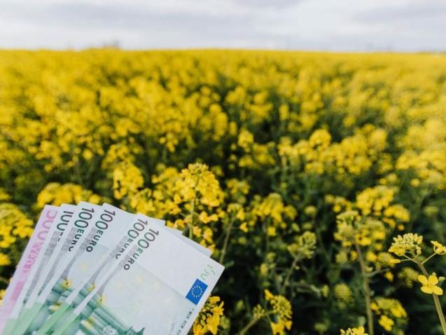 eiro-banknotes-lauks-fona